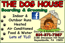 Dog House Ad